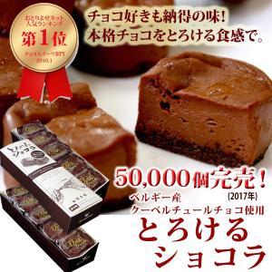 チョコレート チョコレート菓子 スイーツ ギフト お取り寄せ...