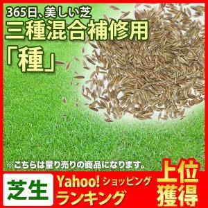 芝生 三種混合芝 補修用 種 (芝 通販)|sun-wa