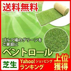 芝生 天然芝 ベント芝 ロール巻芝 (芝生 通販)|sun-wa