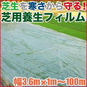 芝生用 養生用フィルム 寒冷紗 sun-wa