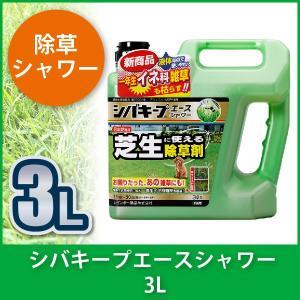 シバキープエースシャワー  3L 4903471100131|sun-wa