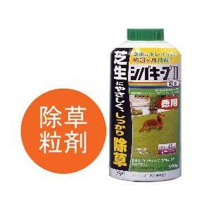 レインボー薬品(株) 除草剤 シバキープ 2 粒剤900g 4903471309145|sun-wa