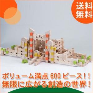 森のあそび道具 ユークリッドブロック(600pcs) 4941746800973(積木) 知育玩具|sun-wa