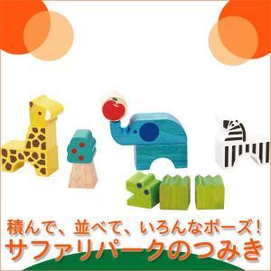 つみコレシリーズ Safari park サファリパーク 4941746806586(ベビー用積み木、ブロック) 知育玩具|sun-wa