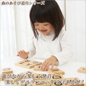 森のあそび道具シリーズ NEW ABCつみき 4941746809471 知育玩具 sun-wa