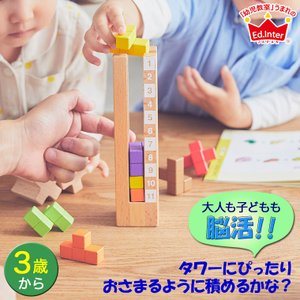 知の贈り物シリーズ 育脳タワー 4941746812327 知育玩具|sun-wa