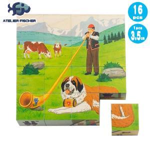 ATELIER FISCHER アトリエフィッシャー 六面体パズル・16pcs・スイス AF1603 知育玩具 sun-wa