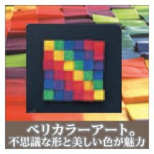 ベリ・デザイン マグネットレリーフ・10 BD9820 知育玩具|sun-wa