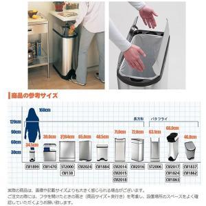 simplehuman ごみ箱 バタフライカン 20L ステンレス FPP CW1837 00123|sun-wa|05