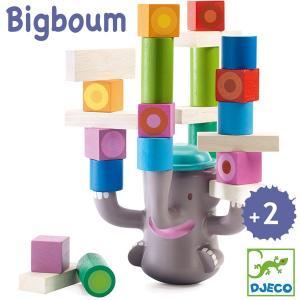 DJECO ジェコ ビッグブーム DJ06321 知育玩具|sun-wa