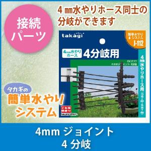 タカギ 4mmジョイント 4分岐 GKJ112|sun-wa