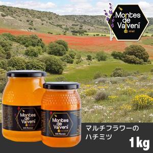 スペイン産 モンテス デ バルベニー はちみつ マルチフラワー 1kg|sun-wa