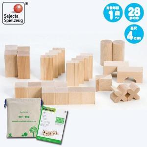 セレクタ BLOCKS・スターターセット・小 SE0002 (積木) 知育玩具|sun-wa