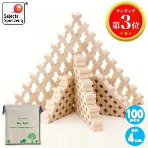 セレクタ X(エックス)-BLOCKS・100 SE0007(積木) 知育玩具|sun-wa