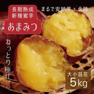 さつまいも 新種蜜芋 5kg 大小混在 予約 出荷目安:1月...