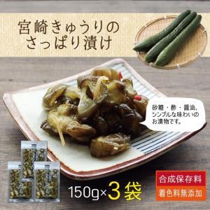 <商品内容>  宮崎県産の熟成きゅうりを使ったカリポリ美味しいお漬物です! そのままお茶請けやご飯の...
