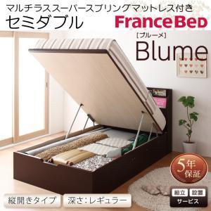 フランスベッド ベッド ベット セミダブルベッド セミダブルベット 収納ベッド ガス圧式跳ね上げ収納ベッド レギュラー 組立設置付き フランスベッド