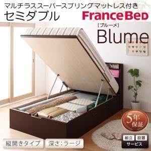 フランスベッド ベッド ベット セミダブルベッド セミダブルベット 収納ベッド ガス圧式跳ね上げ収納ベッド ラージ 組立設置付き フランスベッド