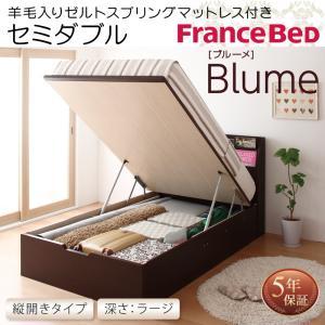 フランスベッド ベッド ベット セミダブルベッド セミダブルベット 収納ベッド ガス圧式跳ね上げ収納ベッド ラージ フランスベッド|sunbridge-webshop