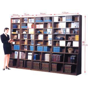 本棚   ロング本棚 幅90cm型   |sundance