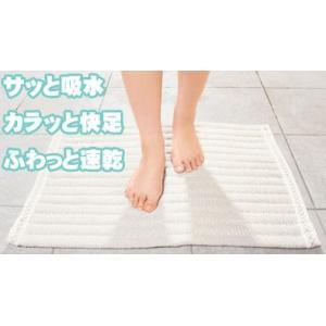 抗菌足拭きマット 「足乾1秒」小|sundance