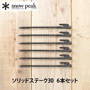 スノーピーク ソリッドステーク30 6本セットsnow peak R-103-1 ペグ 30cm キ...