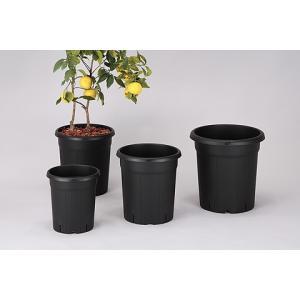 ◎アップルウェアー 果樹鉢 310型 ブラック|sundays-garden