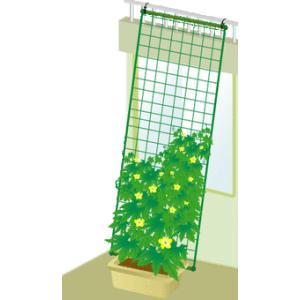 ◎緑のカーテン 5m吊下げタイプ ワイド1800(180cm幅) sundays-garden