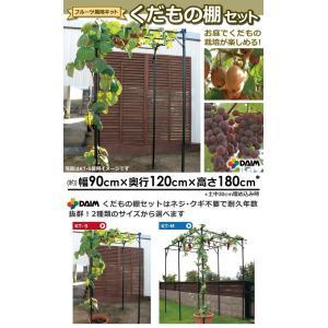 ◎くだもの棚セット KT-S sundays-garden