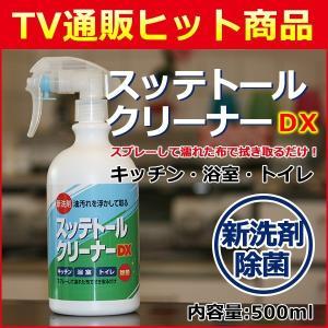 スッテトールDX500ml 1本