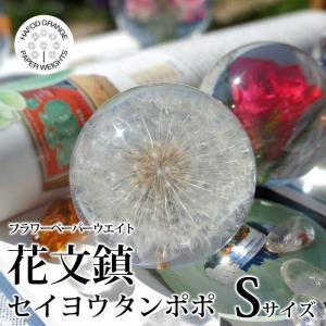 製品特徴 タンポポ(Dandelion)の綿毛を閉じ込めた花文鎮です。 おしゃれなお部屋のインテリア...