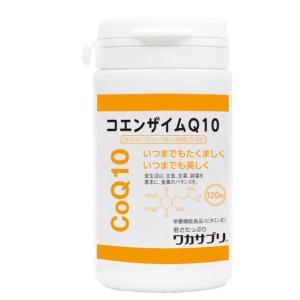 ◆分子生理化学研究所 ワカサプリ コエンザイムQ10 120粒※発送まで11日以上|sundrugec