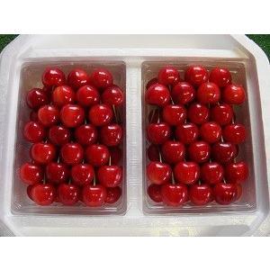 紅秀峰 2Lサイズ(贈答用) 1000g|sunfarm