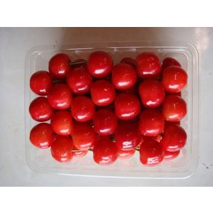 紅秀峰 2Lサイズ(贈答用) 500g|sunfarm