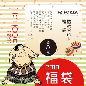 FZ FORZA 詰め合わせ福袋 2018 フォーザ 合計8点入り!【送料無料】 sunfastsports