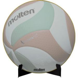 molten XA0110-V バレーボール 色紙 サイン色紙 バレーボール モルテン【取り寄せ】