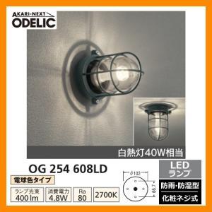 LED 照明 LED ポーチライト OG 254 608LD LEDライト 外灯 屋外 門灯 ODELIC オーデリック 送料無料|sungarden-exterior