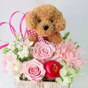 プリザーブドフラワー 花 誕生日 トイプードル 造花のフラワ...