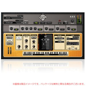 AAS STRUM GS-2 安心の日本正規品!|sunmuse