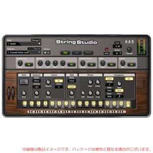 AAS STRING STUDIO VS-2 安心の日本正規品!|sunmuse