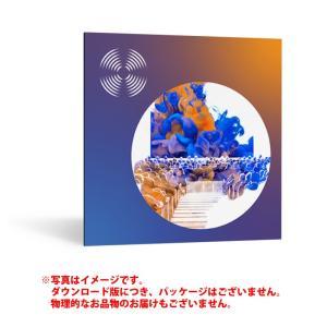 IZOTOPE RX7 STANDARD ダウンロード版 【最短当日シリアル納品】|sunmuse