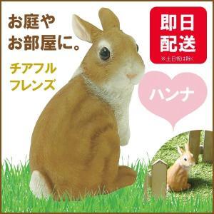 チアフルフレンズ  ウサギのハンナ|sunny-style