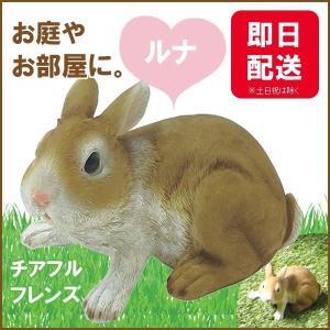 チアフルフレンズ  ウサギのルナ|sunny-style
