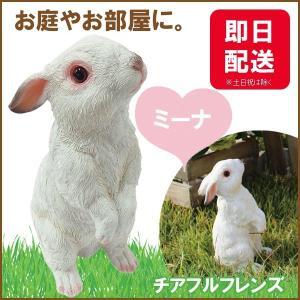 チアフルフレンズ  ウサギのミーナ|sunny-style