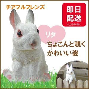 チアフルフレンズ  ウサギのリタ|sunny-style
