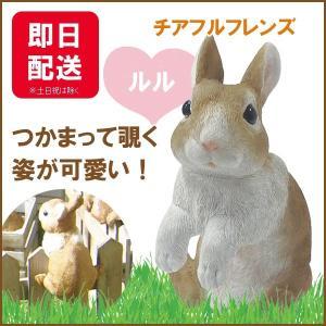 チアフルフレンズ  ウサギのルル|sunny-style
