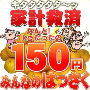 家計救済みんなの150円はっさく(訳あり・不選別)...