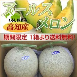 高知県産 訳ありアールスメロン 2玉入【送料無料】...