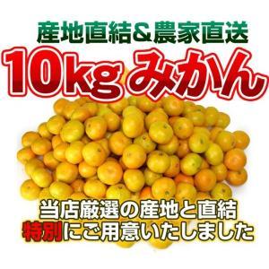 最安値に挑戦!訳ありみかん10kg 温州 【送料無料】訳あり...