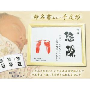 命名書de手足形 手形足形 出産祝い